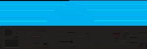 Protective Life Insurance Company logo