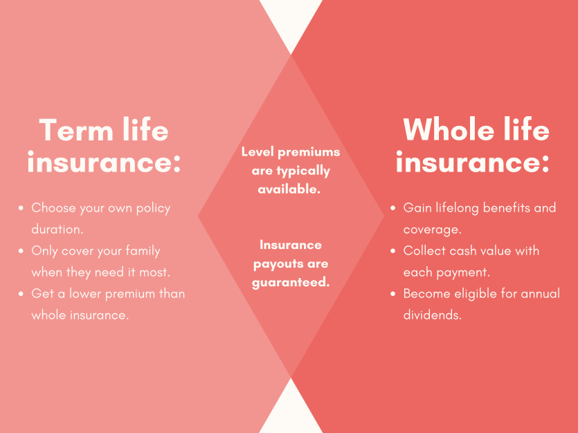 Differences between term and whole life insurance