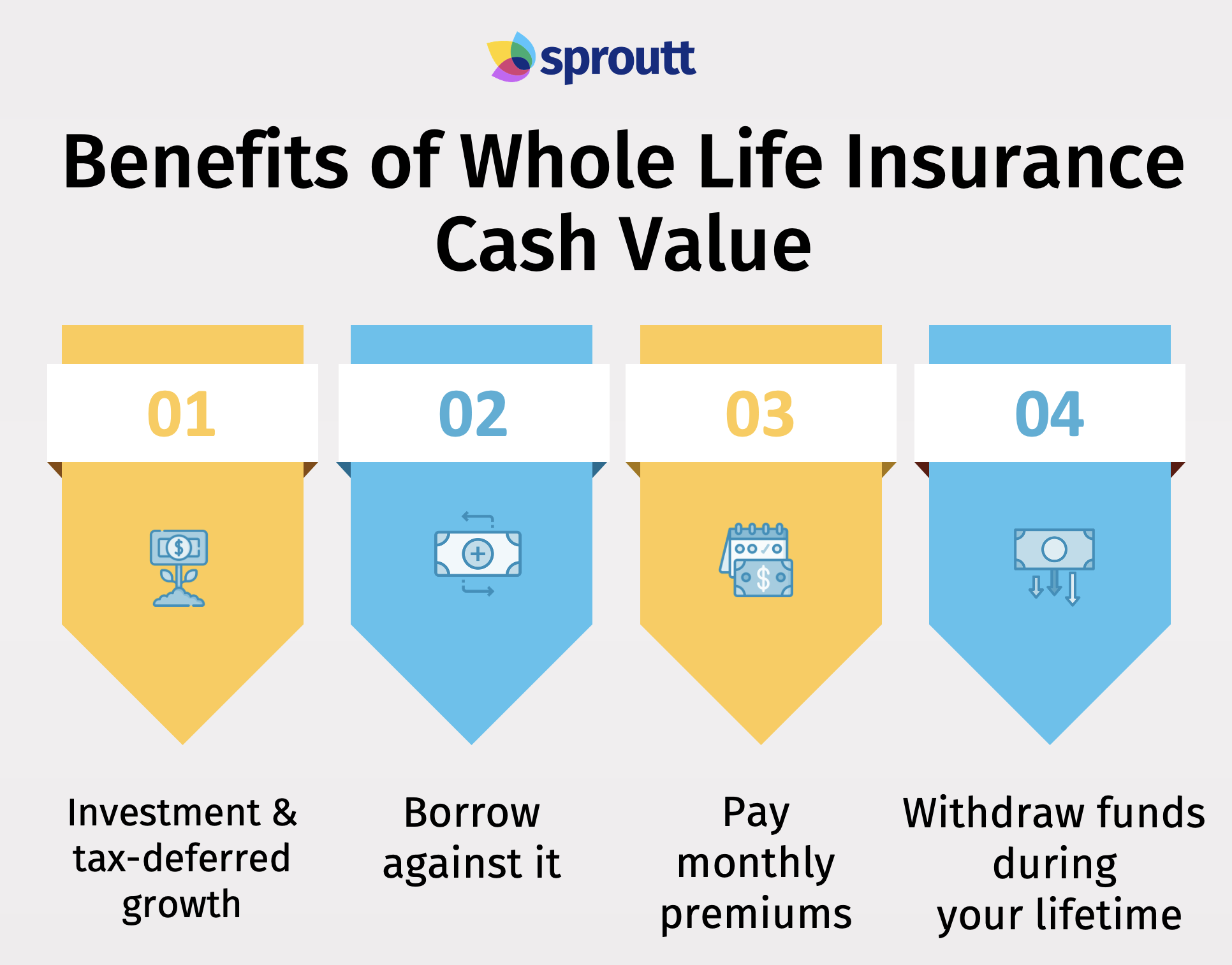 Benefits of Whole Life Insurance Cash Value-Infographic